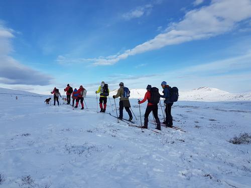 Skitur til Saukampen