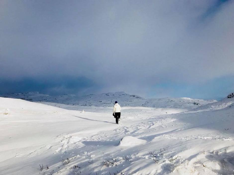 Stien opp til Veslenup. Varierende snømengde, over knedypt noen plasser og enda litt lite for ski.