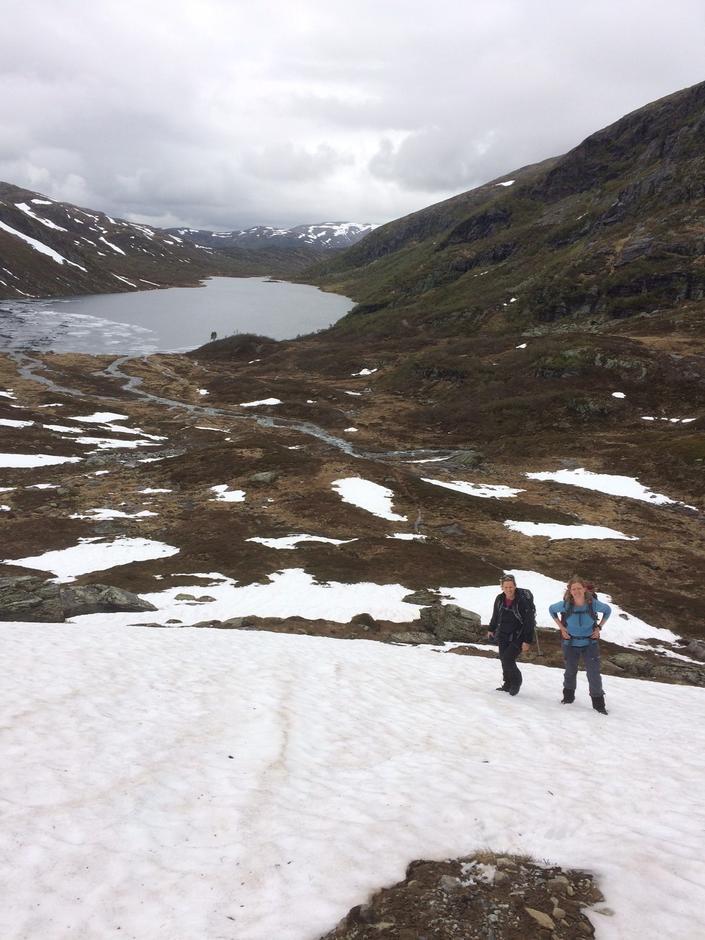 Onsdag 14.6: Mjølfjell - Vesete - Ulvik. Snøgrense på ca. 950 moh. Snø bærer godt. Ikke skiføre.