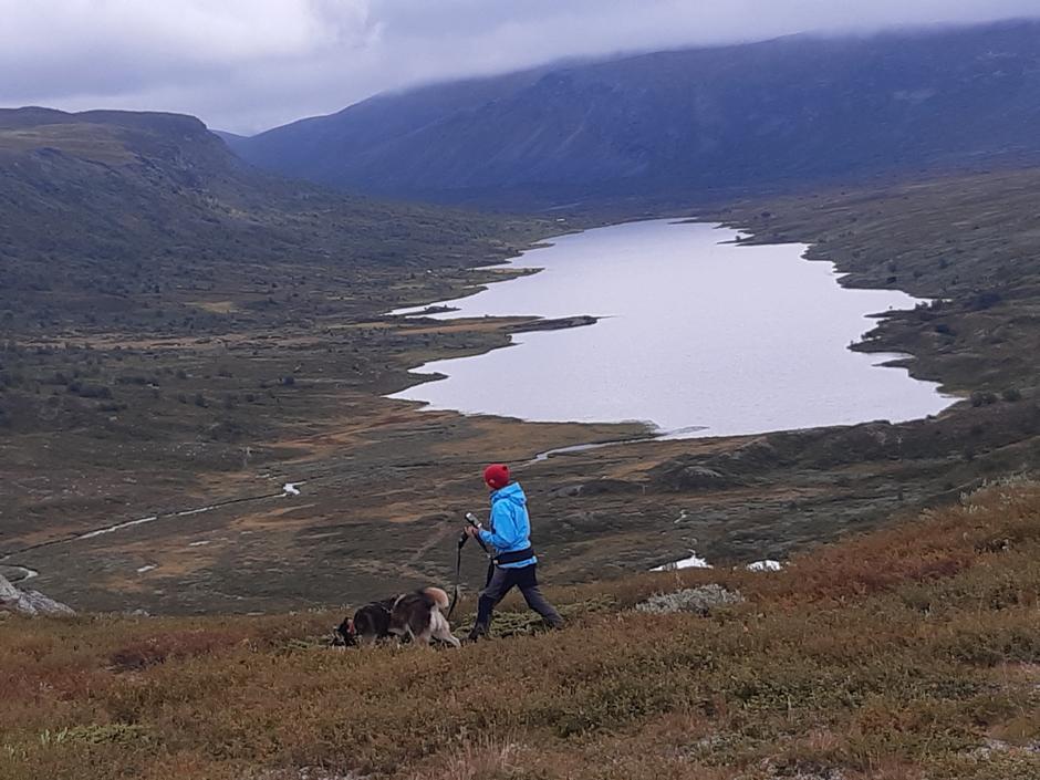 Utsikt over Heimdalen