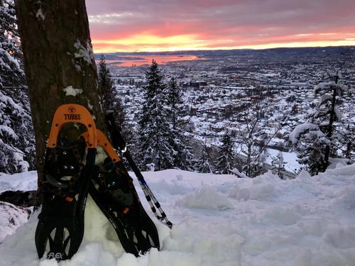 På taket av Oslo - får med deg miljøhovedstadens kuleste utsikt