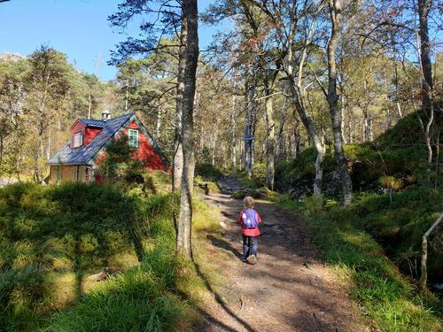 Tre barnevennlige turer i byfjellene