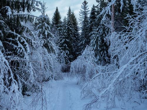 Februar er Søndre-turer