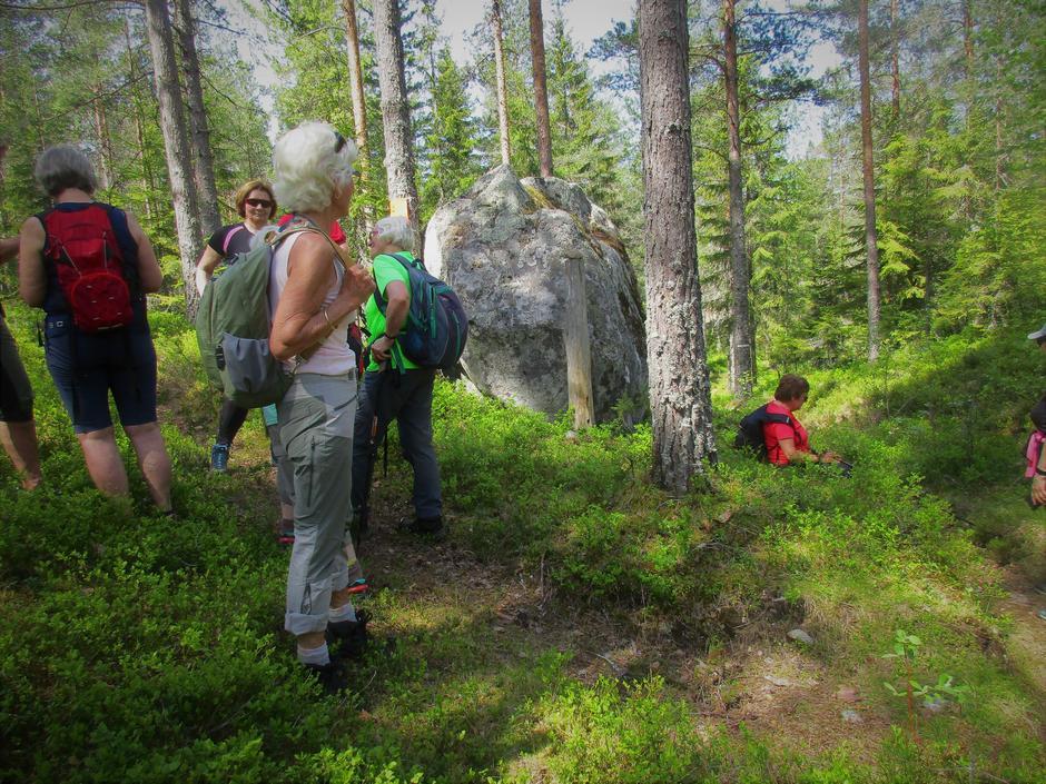 En av fire Mjølne Ragnhild-steiner på Holleia.