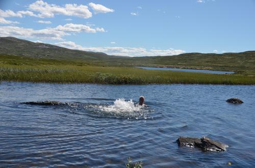 Badelykke i Kruketjønne