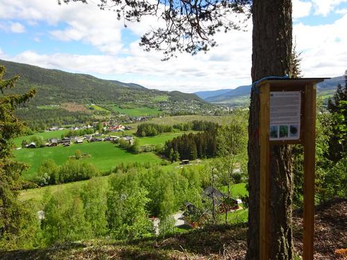 Natursti i Taarudberga