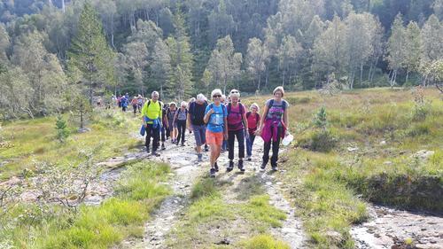 Seniortur til Kvamskogen