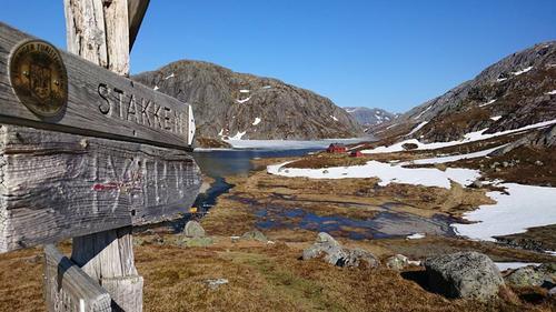 Føreforhold uke 22 Ryfylkeheiene barmark under 890 moh.