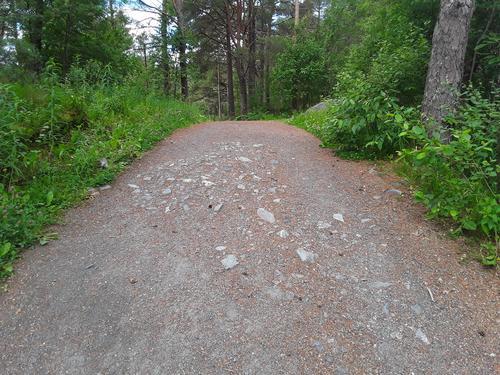 Dette er et av få partier som er hakket mer steinete enn resten av turvegen.