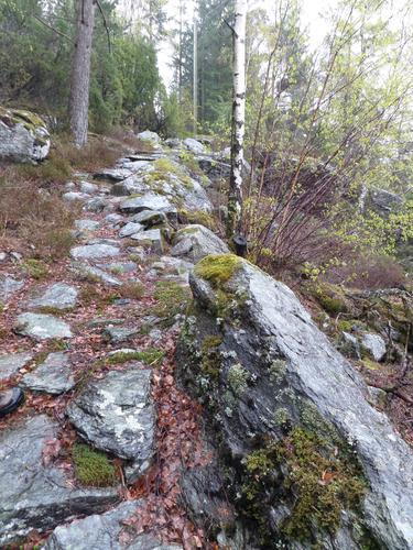 skuleveg mellom Vestersjø og Skår på ombo