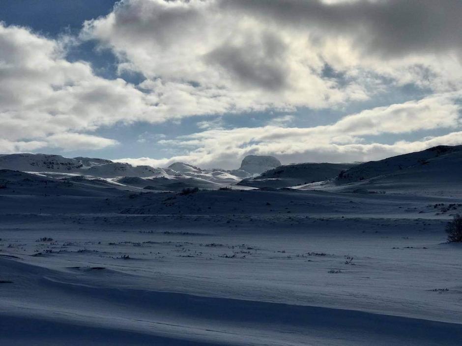 Mandag 15.3: Hårteigen (1690 moh) i horisonten.  Best å holde seg unna Vestvidda pga villrein.