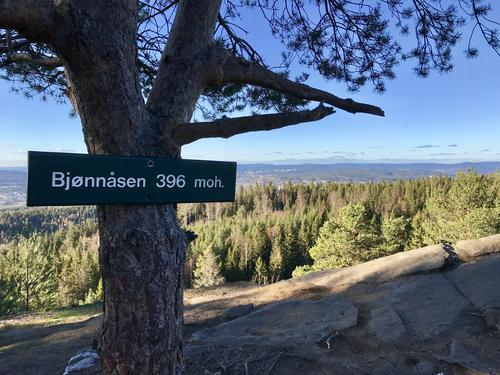 Flott utsikt fra Bjønnåsen