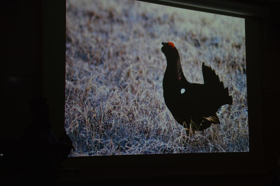 """Kjetil Haave fortalte om og viste oss sine flotte bilder og musikktilsatte filmer i sitt foredrag """"Skogens år""""."""