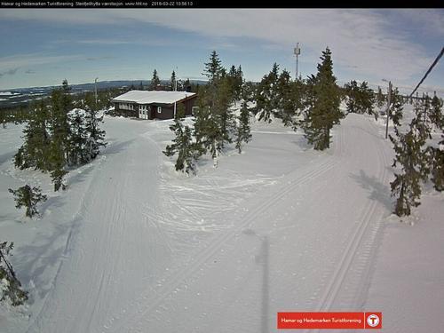 Uke 12: Skiløyper i Hamarregionen