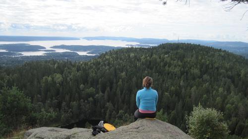 Utsikt fra Nordre Kolsås