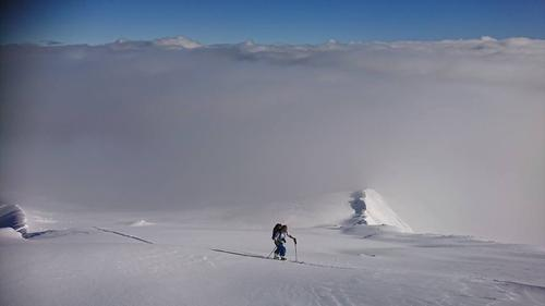 Kribler det i skia?