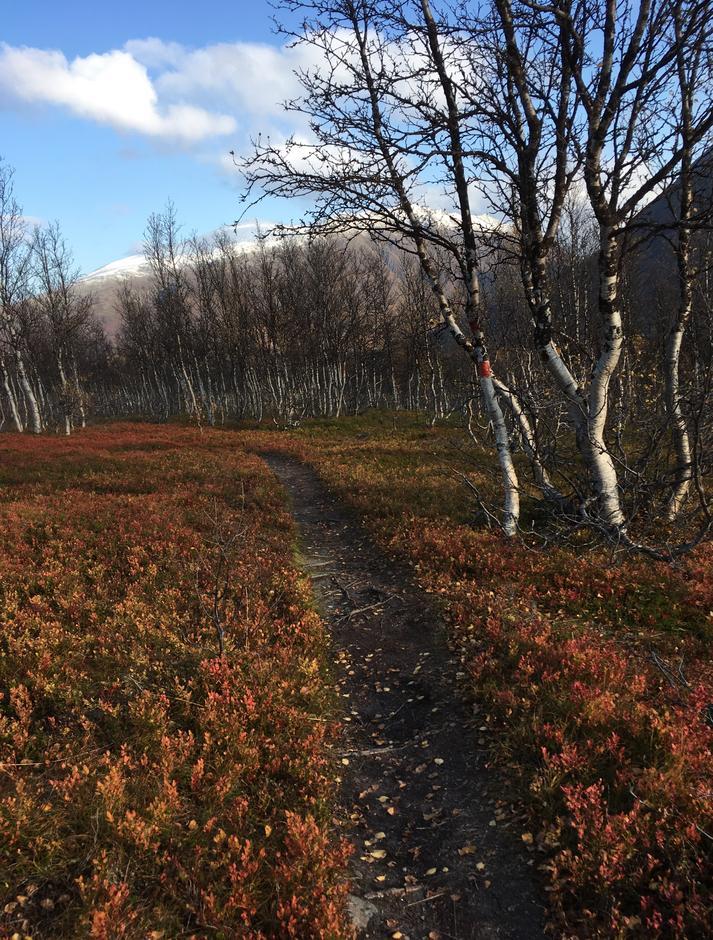 På vei til Trollvassbu i Troms