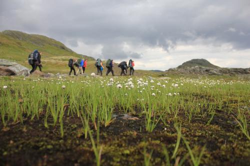 Villmarkstur på Hardangervidda 2011