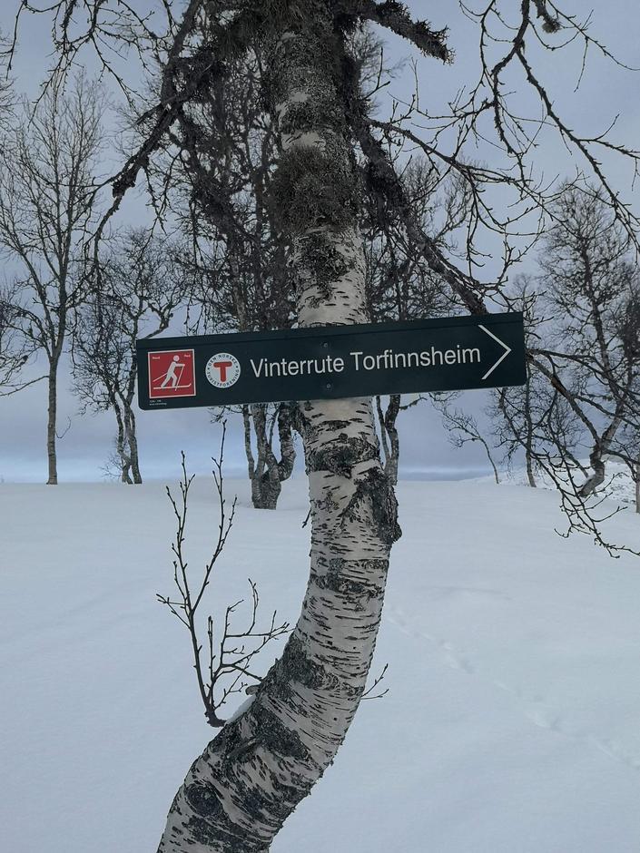 Vintermerking til Torfinnsheim