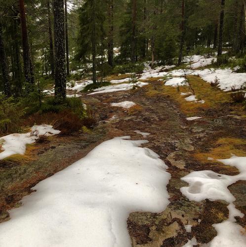 Vintertur til gapahuk