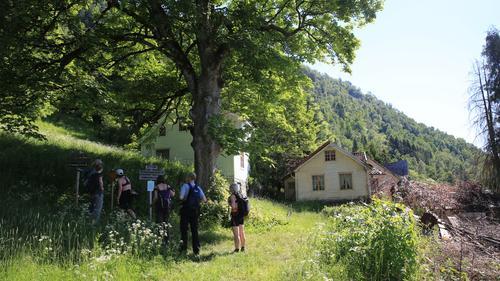 Første etappe på Sognefjordsvegen