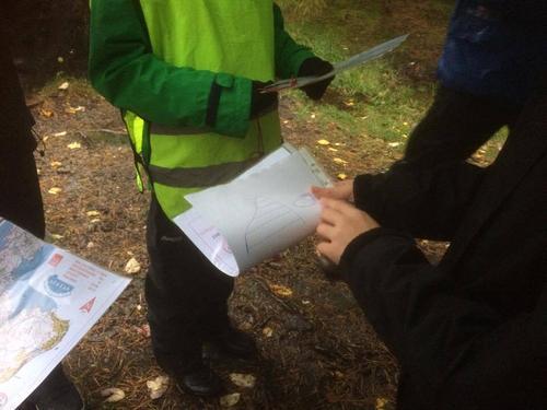 Orientering i Alvøskogen