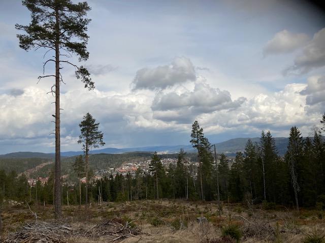 Utsikt fra Skysethøgda.