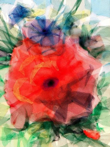 Poppies in tulle