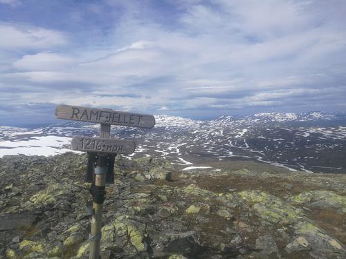 Uke 28  -  Forholdene i fjellet i Trollheimen og Sylan