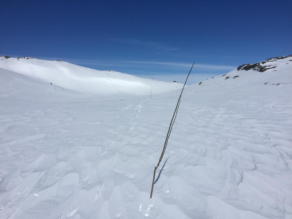 Bra skiføre inn mot Tjørnbrotbu. 26.4.