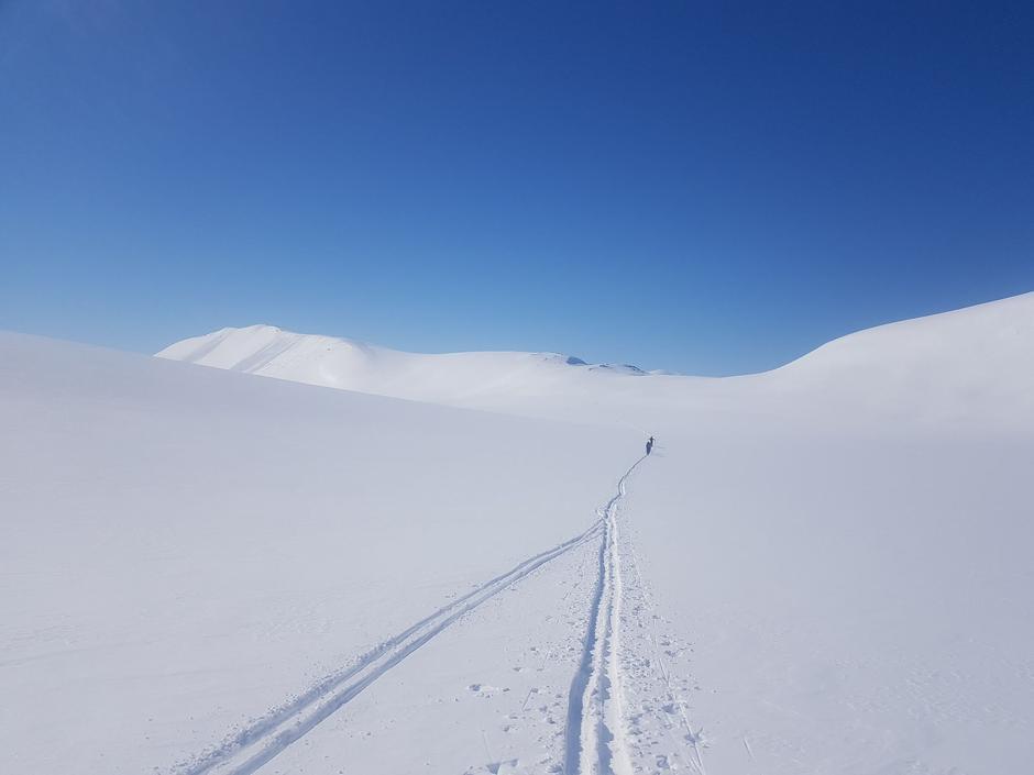 Deilige forhold for ski.
