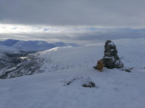 Fine snøforhold i Raundalen
