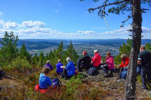 Utsikt fra Røysåsen.