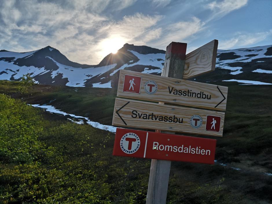 Horndalen 24. juni 2020