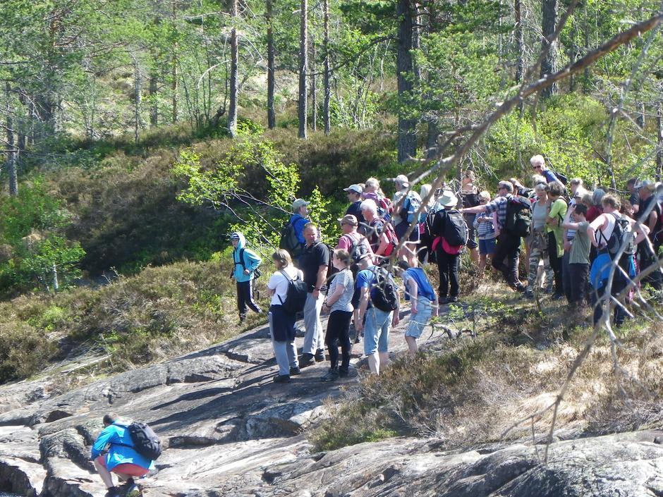 Turdeltakerne i skogkanten