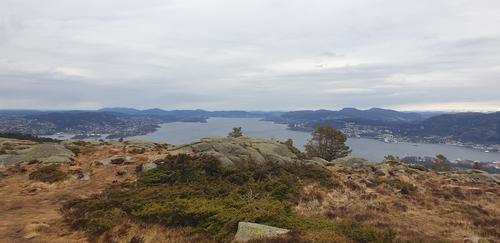 Byfjorden nordover sett fra Damsgårdsfjellet.