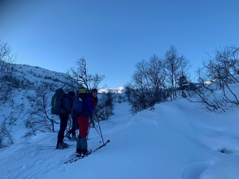 Onsdag 13.1: På vei til Gullhorgabu fra Småbrekke. Bergsdalen. Perfekt skiføre med 20-30 cm nysnø. Det er noen som har det, mens andre må jobbe...