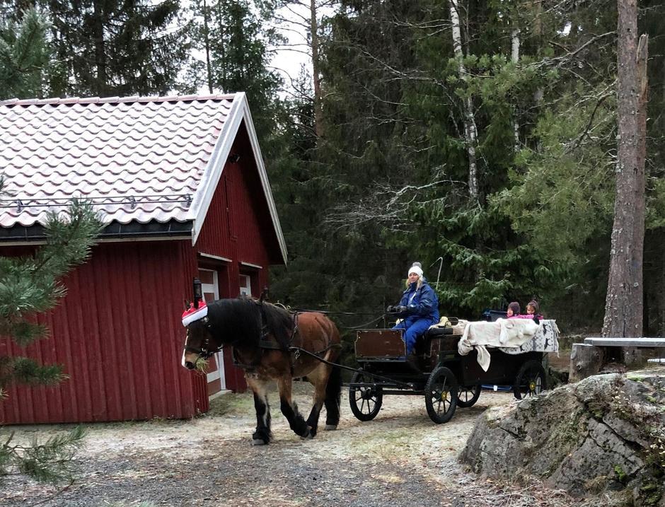 Lukas og Mona, tok med barna på en runde som går over Slirabekken og inn i skogen