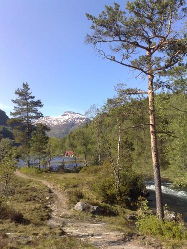 Fitjadalen