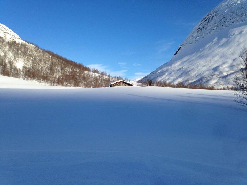 Fra Tyin til Skogadalsbøen.