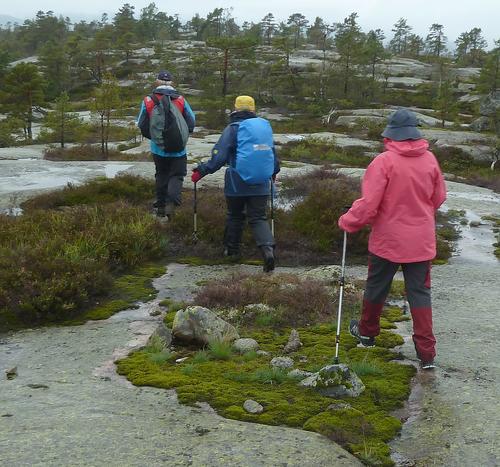 Frå onsdagstur til Velausfjell 04.09.19