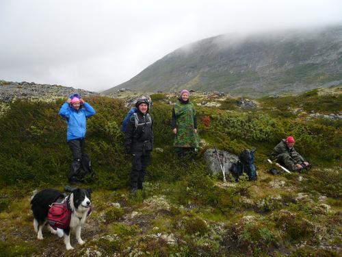 Gråhøe 2014 moh