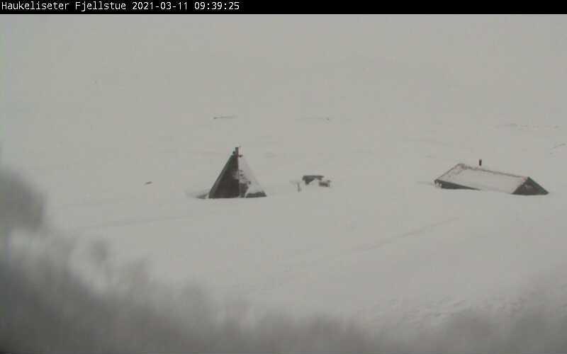 Lurer du på hvordan været er på Haukeliseter? Sjekk ut webkamera da vel!
