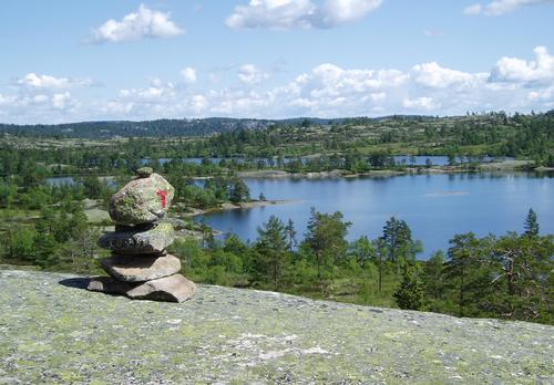Kvenntjønnane naturreservat.
