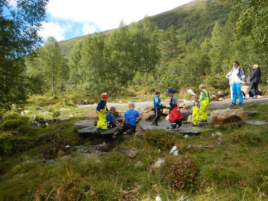 Full aktivitet i dammen! Ingen av desse  ungane reiste tørre heim...