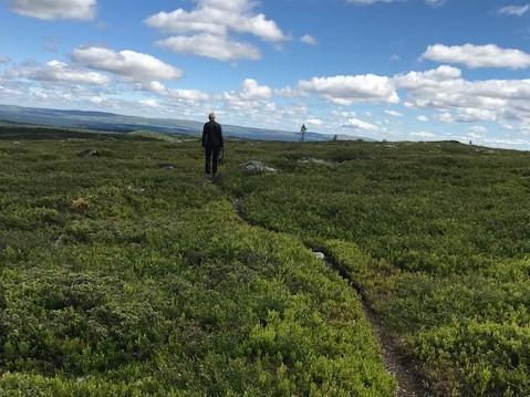 Assistentråket - nymerket  T-sti fra Hita til Hornsjø