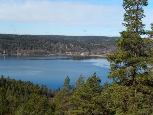 Utsikt mot Nesodden fra Svartskog