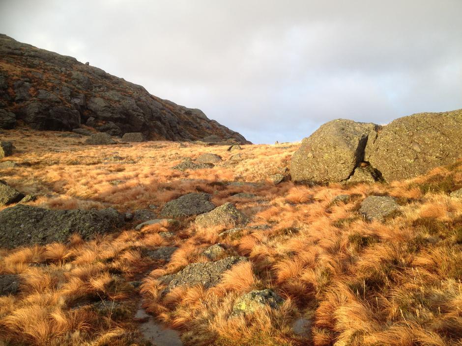 på veg opp på Vardefjellet, Solund