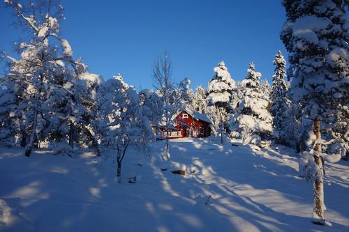 Vinterferie på en DNT hytte nær byen