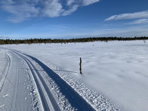 Stenger ikke skiløypene på Hedmarksvidda - hold avstand!